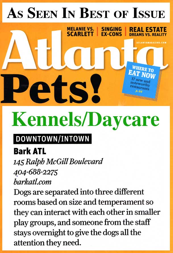 atlanta magazine best dog daycare