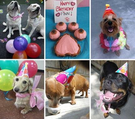 Birthday_Pics2