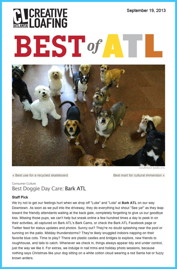 creative loafing best of atlanta dog grooming